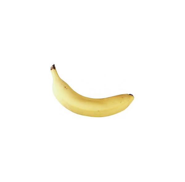 Shaker fruits - BANANE - Roots
