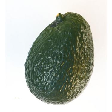 Shaker fruit Avocat - Roots Percussions