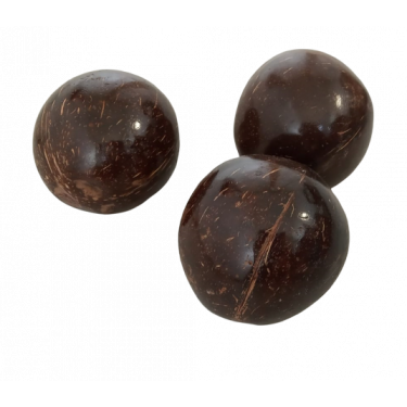Coconut Shaker - Roots Percussions