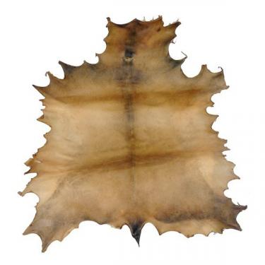 Peau de Daim parcheminée - Ø 60-65 cm