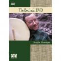 Apprendre le bodhran